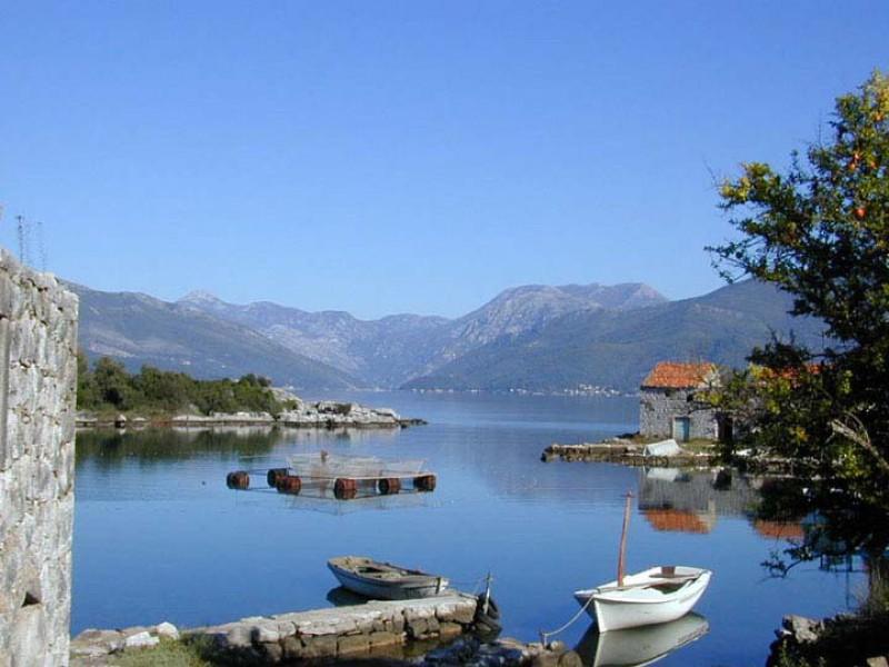 Где находится черногория